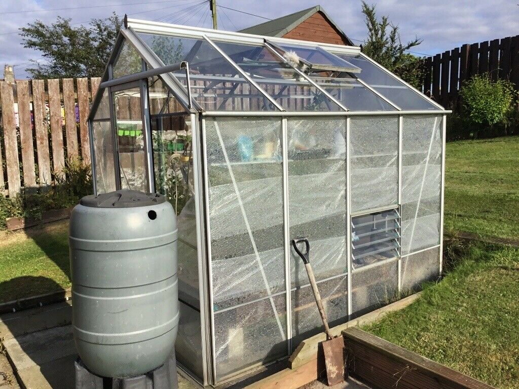 Large New Generation Toughend Glass 4 Year Old Greenhouse In Excellent  Condition | in Edinburgh | Gumtree
