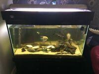Big heavy duty fish tank very heavy