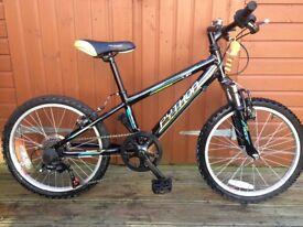 Boys Trail Bike