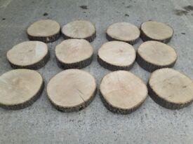 Ash log slices
