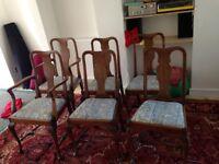 Set Dinning Chairs