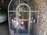 Parrot/Cockatiel Cage