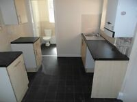 Saltwell Street.Bensham. 2 bed Immaculate lower flat with Private yard. No Bond! DSS Welcome!