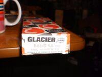 glacier b6445 sa for austin M.G