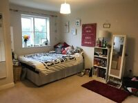 Gorgeous modern house share in Central Chelmsford with parking and a weekly cleaner