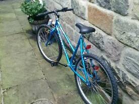 Womens Raleigh bicycle.
