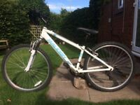 BOYS RALEIGH GRITSTONE MOUNTAIN BIKE
