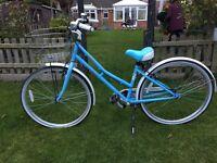 Girls Littleton Pendleton bike