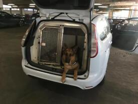 Ford Focus estate/ ex police dog unit/ ideal for security/dog owners