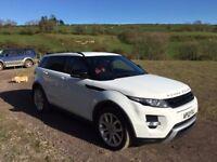 Range Rover Evoque - 2.2 SD4 Dynamic in Fuji White with Pimento/Ebony leather interior