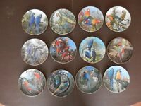 Set of 12 Parrot plates - Wedgwood