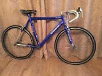 SPECIALIZED ROAD BIKE FRAME / PROJECT