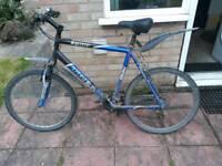 Trek 3900 mountain bike with spare tyres.