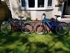 2 x ladies cycles
