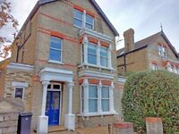 Large 1-bedroom ground floor flat in character Victorian House - Kingston upon Thames