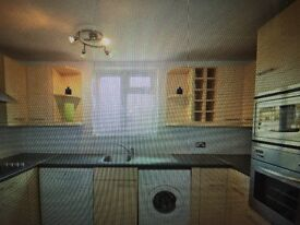 2 Double Rooms in Spacious Flat