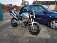 Honda Hornet CB 600 not Suzuki bandit 600cc