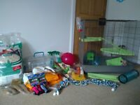 Rat / Ferret cage, with food, bedding and accessories