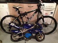 Mini moto and Carrera for sale or swaps will swap for Xbox one s