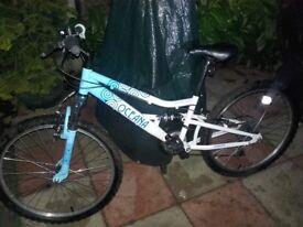 Girls 13 inch bike in good condition.