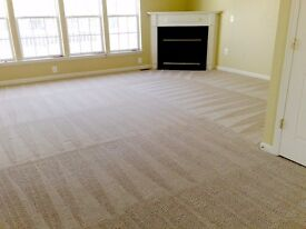 MD Carpet Cleaning / Domestic and Commercial