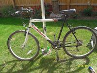 concept javelin mountain bike