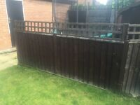 Wooden fence panels, posts and trellis
