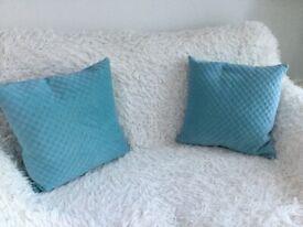 Two Velveteen Cushions