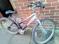Girls/Ladies Raleigh Explore mountain bike