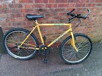 "men's apollo jalapeno bike 26"" wheels"