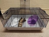 Large Animal Cage (Hamster/Gerbil/Rats/other) 80x50x38cm
