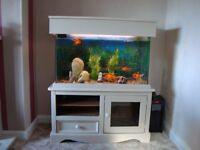 160 Litre Fish Tank with cabinet, hood, lighting, heater, air pump and loads of accessories.