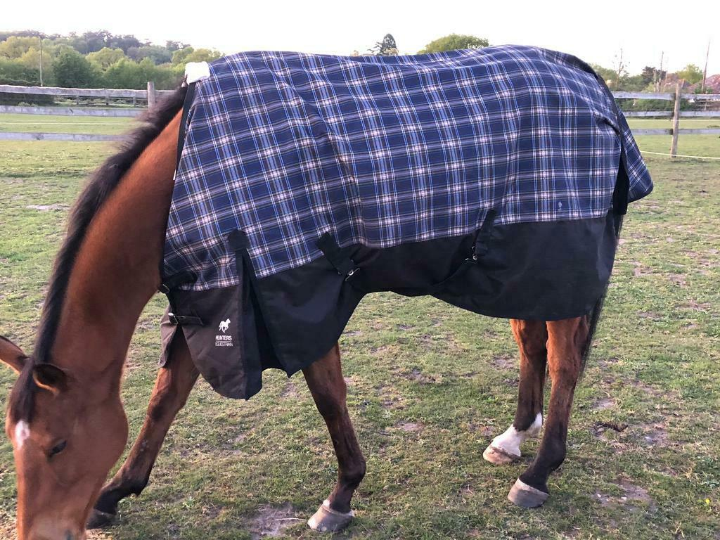 6 3 Horse Rugs In Farnham Surrey