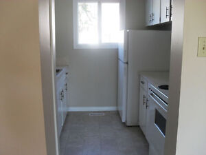 Townhouse in Castledowns Northwest - 3 Bedroom Townhome for Rent