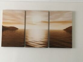 Set of 3 canvas pictures