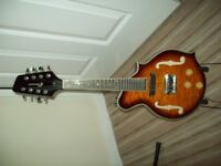 Clearwater solid body electric Mandolin
