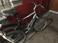 Men's Specialized Expedition Hybrid Bike