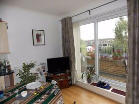 TWO BEDROOM, TWO BATHROOM APARTMENT WITH SOUTH FACING BALCONY IN BOW E3 TO RENT
