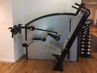 All In One (AIO) by David. A full body workout with only one piece of weight training equipment.