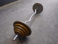 EZ Curl bar with 46kg of metal weights
