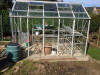 Hercules Trafalgar Aluminium Greenhouse by The Greenhouse People