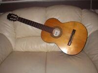 Guitar wooden