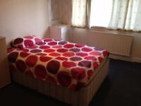 BEAUTIFUL LARGE DOUBLE ROOM FOR SINGLE PROFESSIONAL IN ACTON