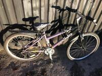 Raleigh Wildcat Mountain Bike. Refurbished Bike & in great condition. Free Lock, Lights, Delivery