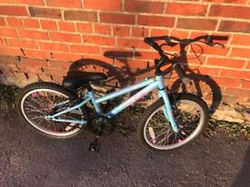Xmas Gift? Apollo XC.20 Girls Bike. Serviced. Free Lights & Delivery.