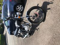 MASH 50cc ROADSTAR - MINT CONDITION - AS NEW - PERFECT FIRST BIKE