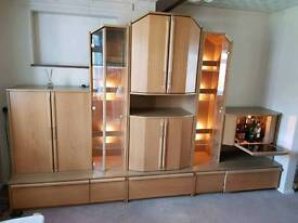 Large cabinet with lights and alcohol cupboard