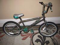 Retro Aardvark BMX Bike Bicycle Kid's Men's Children's Adult's