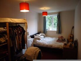 Double room in houseshare to rent, only £339 PCM includes all bills