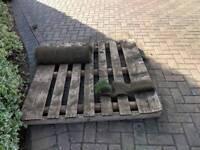 Free pallet and free 1 metre of turf
